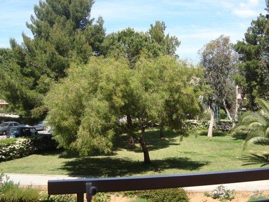 Location T2 cabine vue sur jardin à proximité commerces et plages